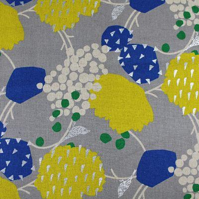 kokka-lin-echino-bleu-jaune-oiseau-argent
