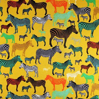 sweat-animaux-zebre-savane-jaune