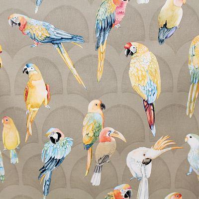 thevenon-coton-perroquet-ameublement-ecaille