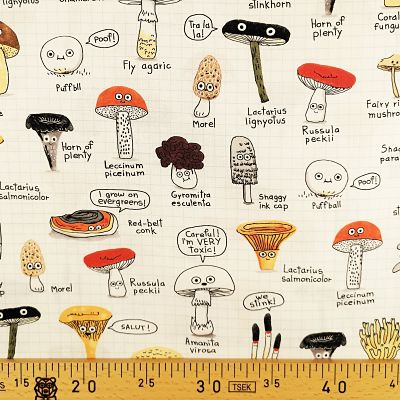 michel-miller-champignons-carreaux-forrage-finds