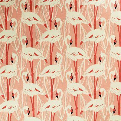 katia-canvas-flamingps-flamant-rose
